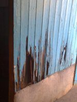 Termites like to eat wood, even doors don't escape their attention.